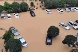 """抗击台风""""黑格比"""",三角洲救援在行动!"""